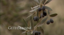 Gethsemane mormon